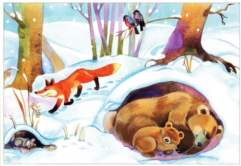 Сюжетные картинки о зиме в доу